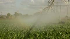 Walking water line irrigating corn time lapse Stock Footage