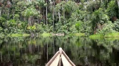 Paddling a dugout canoe in The Amazon (searching for a Green Anaconda) Stock Footage