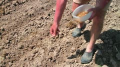 Farmer sowing seeds Stock Footage