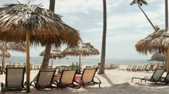 Relaxing beach scene with palm trees and ocean Stock Footage