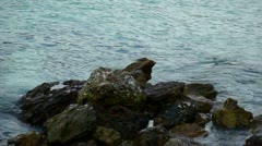 PhiPhi water 002 Stock Footage