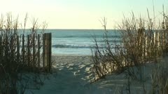 sea view from opening in fence and sea grass - stock footage