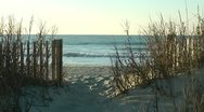 Sea view from opening in fence and sea grass Stock Footage