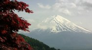 Stock Video Footage of Mt. Fuji and Japanese Maple