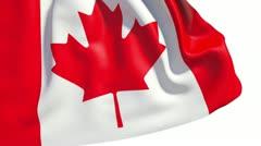 Waving Canada flag - stock footage