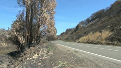 Chile coast range burned over along a road Stock Footage