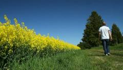 Man walking besides a rapeseed field - stock footage