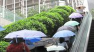 Stock Video Footage of HONG KONG-UMBRELLAS-RAIN 1