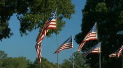 Group of six American flags Stock Footage