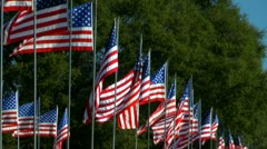 Large grouping of American flags lined up in rows Stock Footage