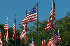 Large grouping of American flags Stock Footage