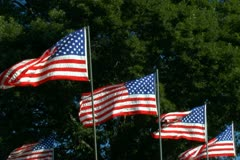 Group of four American flags Stock Footage