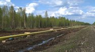 Pipeline construction, gas line in forest wide shot Stock Footage