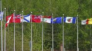 Stock Video Footage of Canadian provincial flags in a stiff breeze