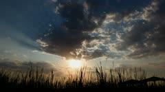 La ALbufera Natural Park - Sunset Stock Footage