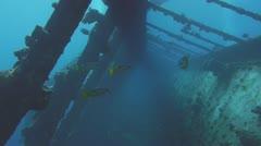 Corridor in sunken ship, red sea Stock Footage