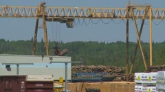 Industry, sawmill plant rail crane moving lumber Stock Footage