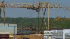 Industry, sawmill plant rail crane moving lumber, 2nd crane through frame Stock Footage
