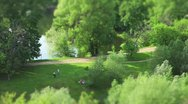 People in park Time Lapse Stock Footage