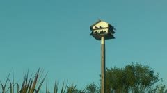Purple martin birdhouse Stock Footage