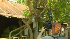 Luang phabang laos lao photographer shooting and playing with recess monkey i Stock Footage