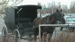 Amish Transport Stock Footage