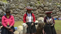 Cuzco cusco peru traditional women with colorful clothes and llamas in religi Stock Footage