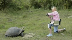 galapagos islands ecuador tourist relating giant tortoises on santa cruz high - stock footage