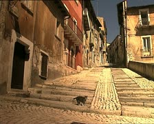 LAQUILA costa masciarelli street with cat Stock Footage