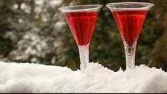 Holiday Cheers Stock Footage