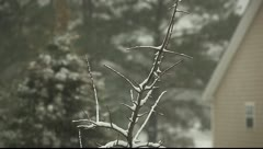 Winter weather Stock Footage