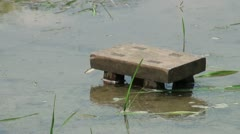 Little chair to sit on while planting rice Stock Footage