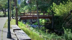 Bridge Over Creek- Mariposa, California - stock footage