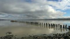Puerto Natales row of posts in water s Stock Footage