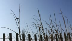 Sand dune fence and sky Stock Footage