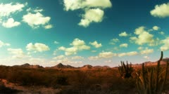 Cactus desert baja california sur mexico Stock Footage