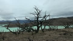 Torres del Paine burn s2 Stock Footage
