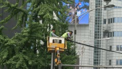 Traffic safety workers Inspecting overhead wires Stock Footage
