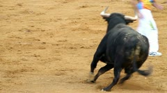 Powerful spanish bull, bullfight arena Stock Footage