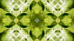 Kaleidoscope pattern of rice dumplings of glutinous rice,dumplings leaf. Stock Footage