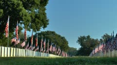 Flags displayed in military cemetery at sunrise against blue sky Stock Footage