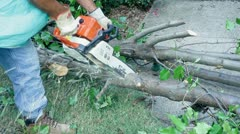 Chainsaw close cutting wood cut Stock Footage