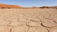 Sossusvlei sun-baked earth tracking shot Stock Footage