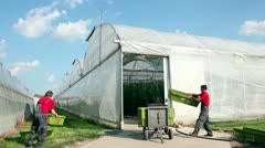 Commercial Greenhouse Exterior Stock Footage