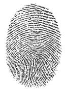 Finger print on white background Stock Illustration