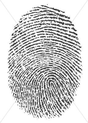 Stock Illustration of finger print on white background