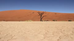 Tracking shot in Nambian desert Stock Footage