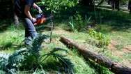 Stock Video Footage of Man Sawing With Dull Chain Saw 1