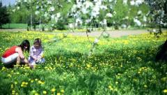 Mother and daughter picking up a flower from meadow full of sow-thistle Stock Footage