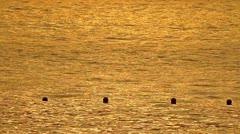 Golden Sunset on Sea Water Stock Footage